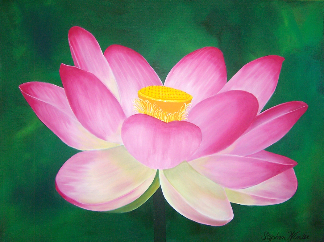 Flower paintings pink sacred lotis izmirmasajfo
